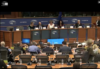 Culture Committee of the European Parliament in session 2019